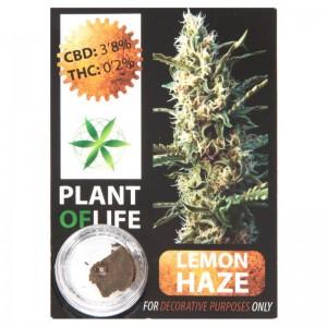 CBD Solid Lemon Haze 3,8% 1g