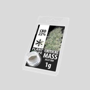 CBD Solid Critical Mass 22% 1g