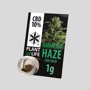 CBD Solid Amnesia Haze 10% 1g