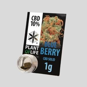 CBD Solid Blue Berry 10% 1g