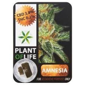 CBD Solid Amnesia 3,8% 1g